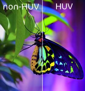 impression huv HUV (H-UV)