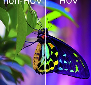 impression huv HUV (H-UV)